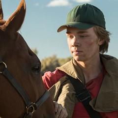 Rota Selvagem mostra o drama e o amadurecimento da vida de um adolescente (e seu cavalo)